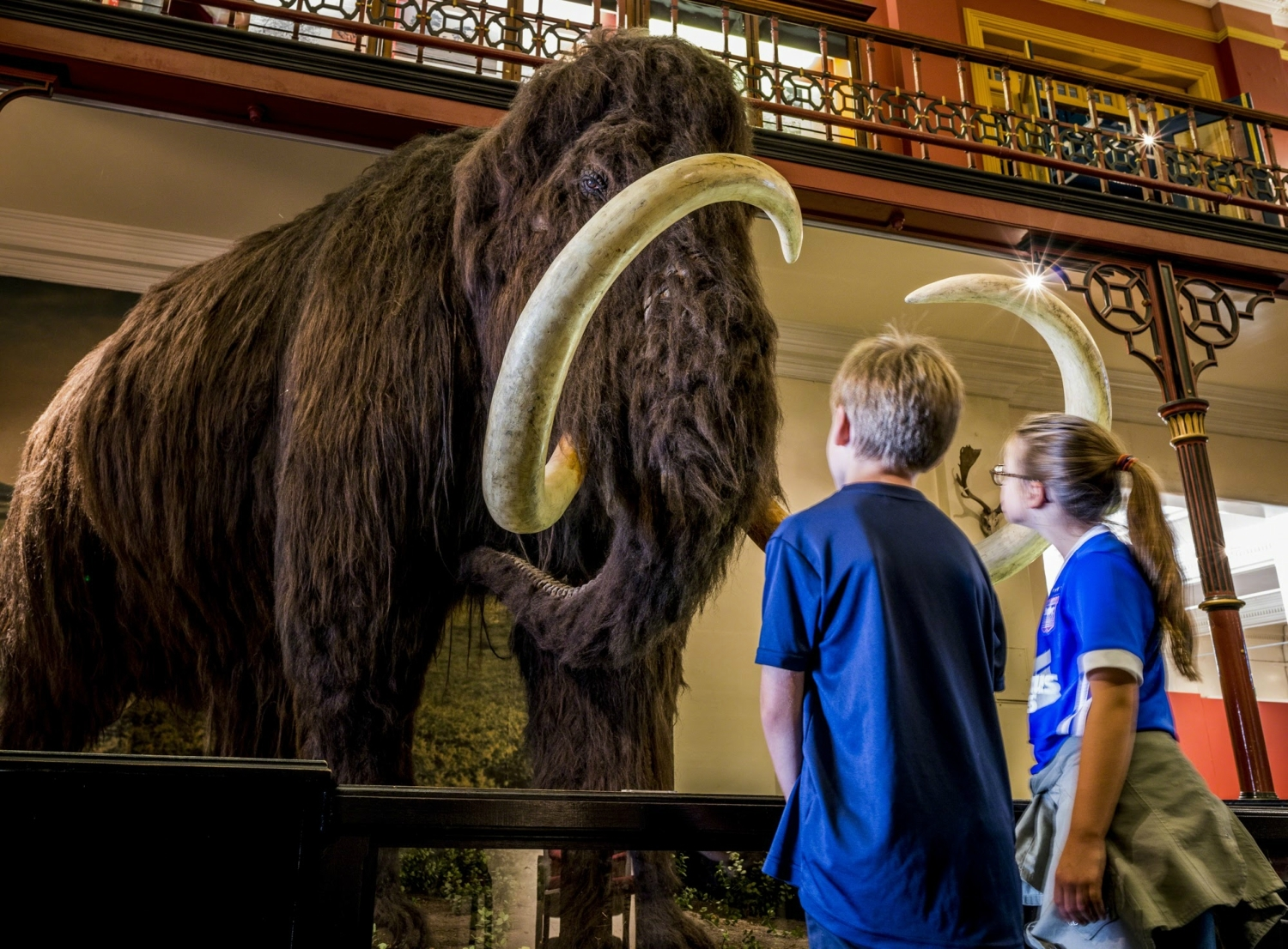 1. Woolly Mammoth